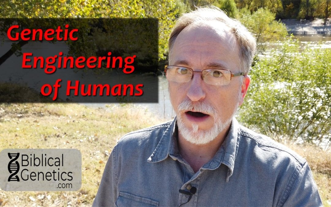 Genetic Engineering of Humans
