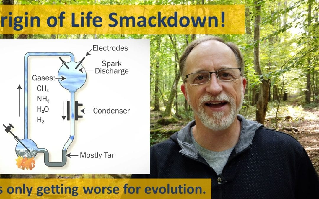 Origin of Life Smackdown
