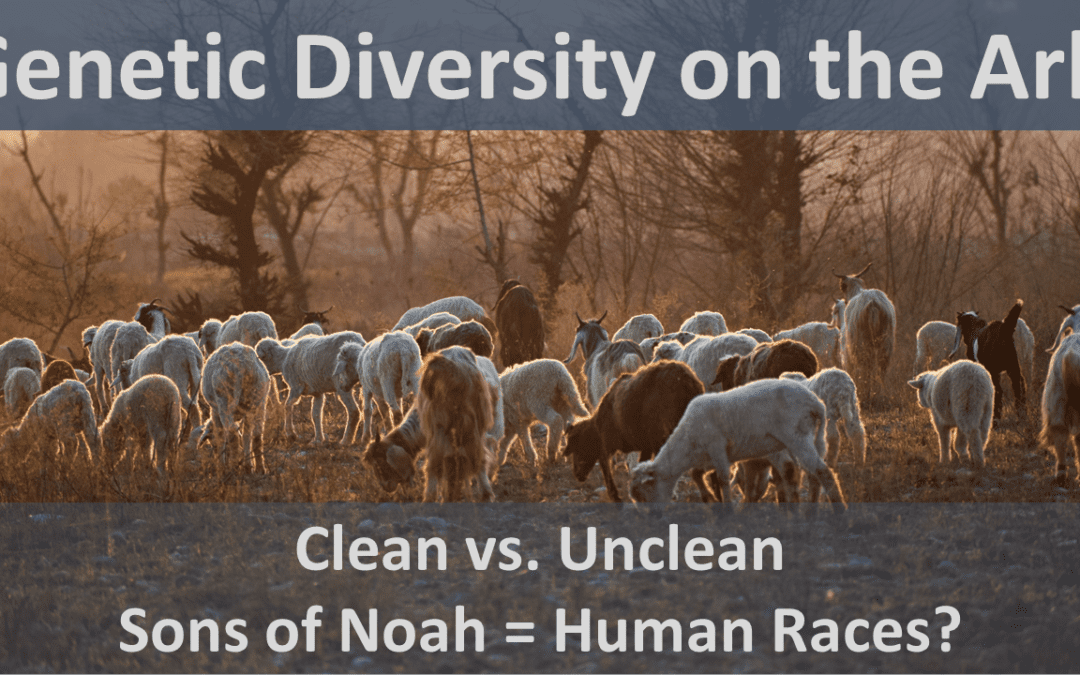 Genetic diversity on the Ark