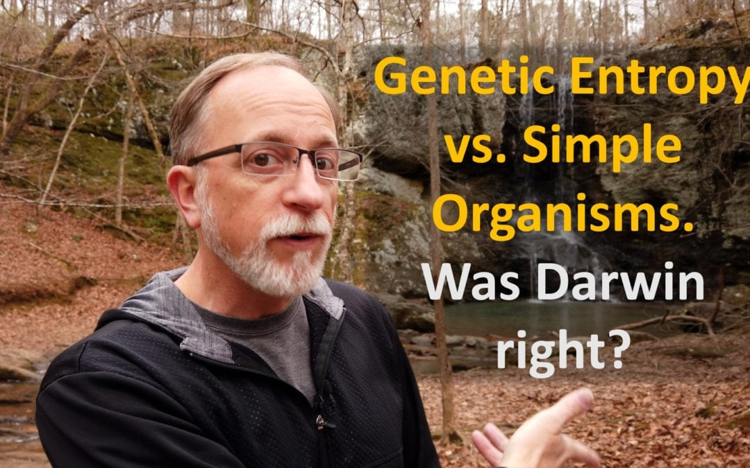 Genetic Entropy vs Simple Organisms. Was Darwin right?